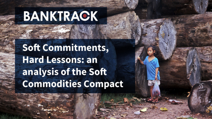 "Cover of BankTrack's report ""Soft Commitments, Hard Lessons"". Photo: Rod Harbinson"