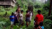 Forest destruction for the establishment of an oil palm plantation, Kalimantan, Indonesia. By Milieudefensie/Myrthe Verwey