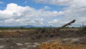 Plantation from Indofood in Riau, Indonesia. By Milieudefensie/Myrthe Verwey