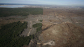 Oil sands means destruction of ecosystems on a vast scale